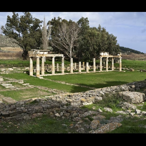 temple of artemis 0849